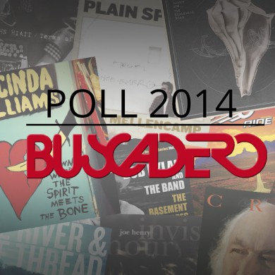 poll2014_coverarticolo_ok