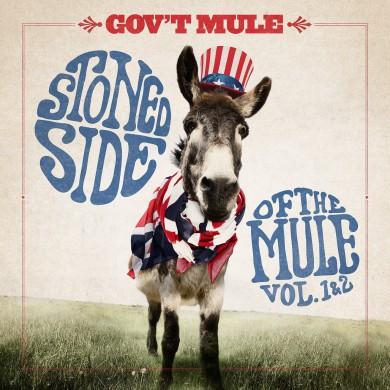 stoned mule
