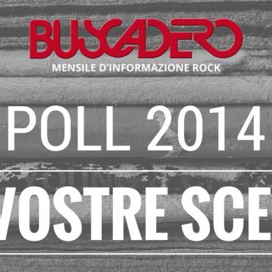 poll_lettori2014