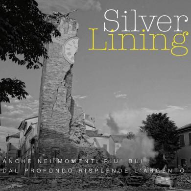 SilverLiningDGPackDEF