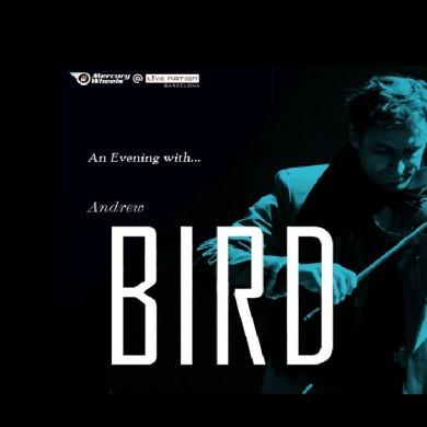 andrew-bird-madrid-270716-original